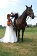 Wedding horse.
