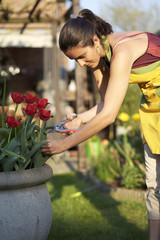 Frau schneidet Blumen im Garten