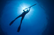 A silhouette of a young woman spearfishing