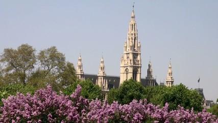 Wiener Rathaus im Frühling