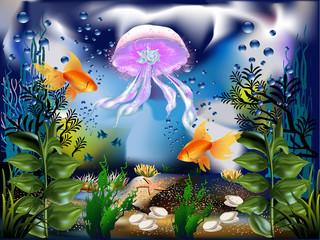 La Medusa marina-The Medusa marina