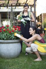 Zwei Frauen bei Gartenarbeit