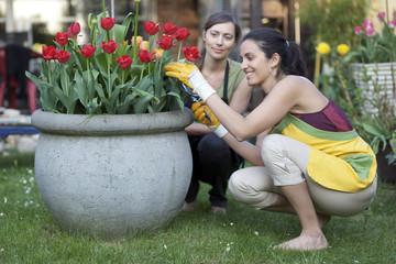 Two woman gardening
