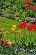 Frühlingsgarten im April