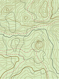 vector abstract topographical map with no names