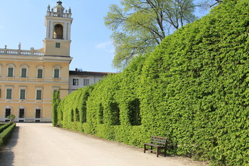 giardino medioevale