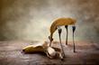 Banane auf Gabeln