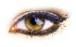 human dots eye