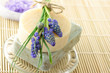 Handmade soap, lavender bath salt, and grape hyacinth