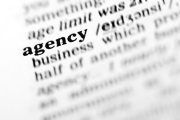 agency (the dictionary project)