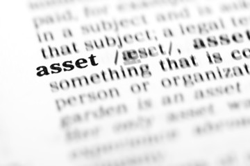 asset (the dictionary project)