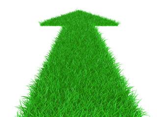 Arrow from a grass directed upwards