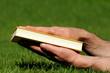 Hände halten Buch