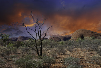 Colors of Australian Outback