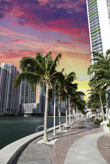 Miami Beach Buildings and Colors, U.S.A.