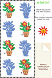 Visual puzzle: Match the potted flowers with their shadows poster
