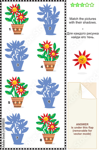 Visual puzzle: Match the potted flowers with their shadows