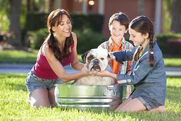Mother Son & Daughter Family Washing Pet Dog In A Tin Tub