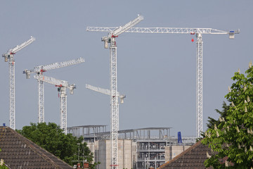Cranes on a Large Construction Site