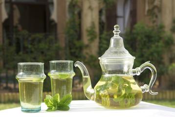 the menthe marocain