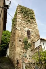 torre antica Vicopisano