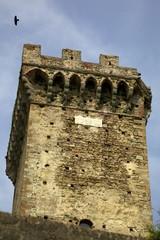 Torre del Brunelleschi, Vicopisano