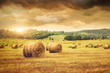 Field of freshly bales of hay with beautiful sunset - 31838189