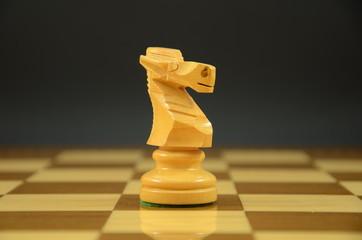 Caballo sobre tablero de ajedrez