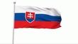 Fahne Slowakei NTSC