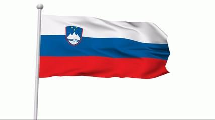 Fahne Slowenien NTSC
