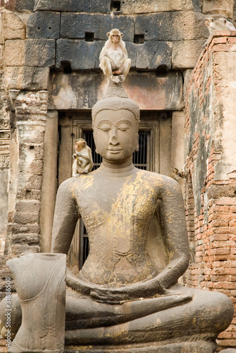 Buddha and monkey 1.