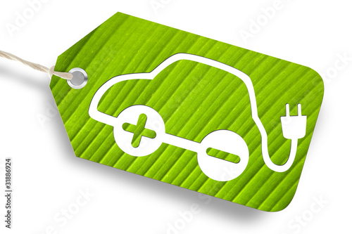 e-car on green leaf