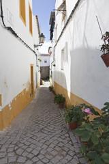 callejuela en Portugal