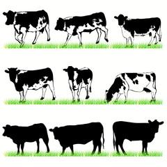 Cows & Bulls set