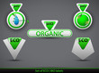 Set of green eco | bio icons.Vector illustration.