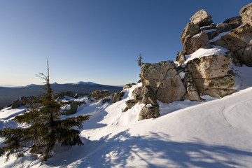 Winter in taiga. Trees and rocks in snow.