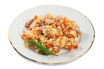 Pilaf of rice and chicken on plate isolated
