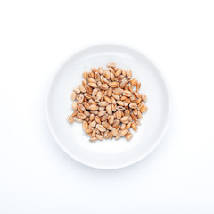 Food and Spice serie: Wheat Berries