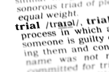 trial (the dictionary project)