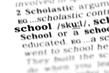 school (the dictionary project)