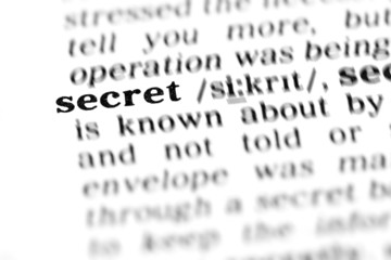 secret (the dictionary project)