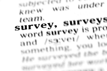 survey (the dictionary project)