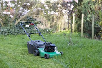 Rasenmäher - halb gemähter Rasen -
