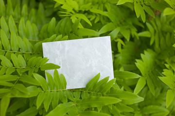 letter[leavesG]_03