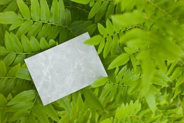 letter[leavesG]_01
