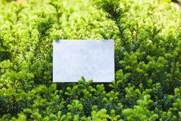 letter[leavesN]_18