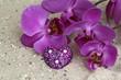 Orchideenblüte und Herz im Sand