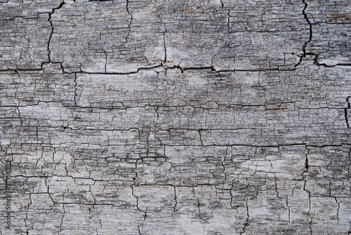 Holz rustikal Risse Maserung silber grau alt antik Hintergrund