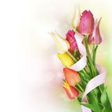 Fototapety Spring Tulip Flowers bunch