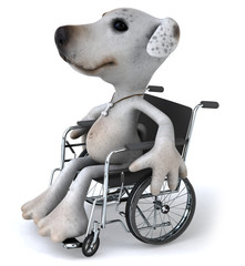 Chien en chaise roulante